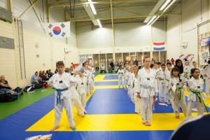 3_Taekwondo_5